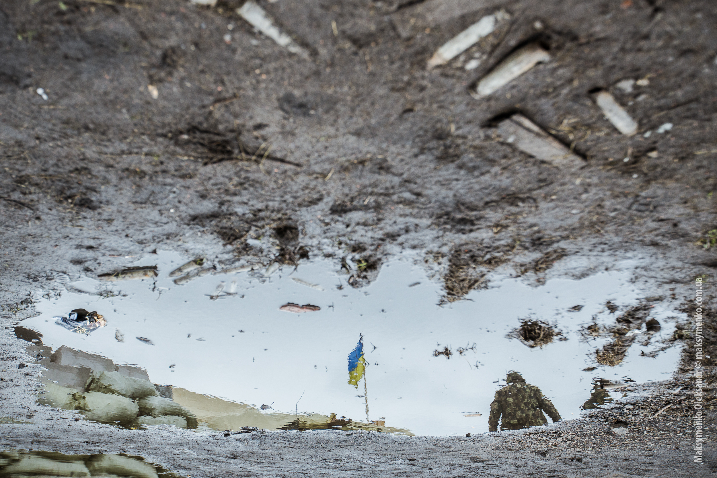 Ukraine flag in the reflection of water.
